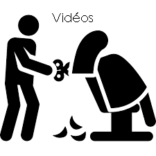 3. Vidéos de formation en coiffure et contenu Word